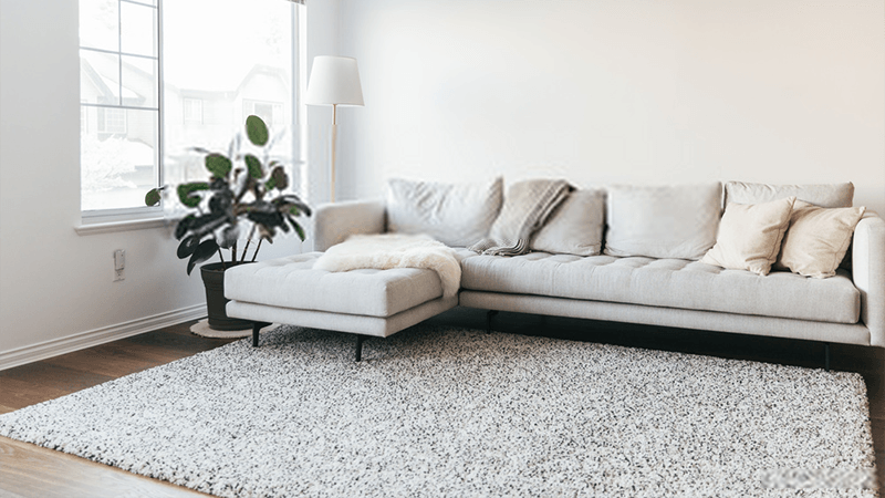 Best Domestic Carpet Cleaner in Leeds