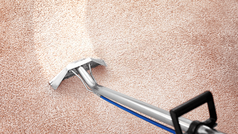 Tips to Choose the Right Domestic Carpet Cleaner